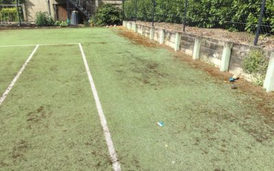 How to kill Moss on your Tennis Court